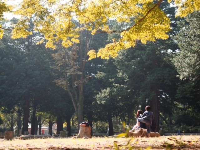 パーカーコーデが映える秋!レディースコーデに上手に活用!